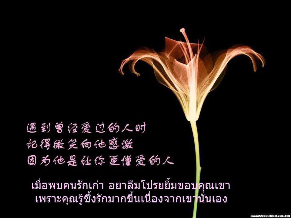 เมื่อพบคนรักเก่า อย่าลืมโปรยยิ้มขอบคุณเขา เพราะคุณรู้ซึ้งรักมากขึ้นเนื่องจากเขานั่นเอง