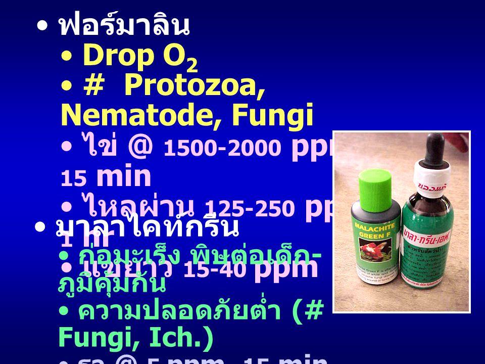 ฟอร์มาลิน Drop O 2 # Protozoa, Nematode, Fungi ไข่ @ 1500-2000 ppm, 15 min ไหลผ่าน 125-250 ppm, 1 hr แช่ยาว 15-40 ppm มาลาไคท์กรีน ก่อมะเร็ง พิษต่อเด็