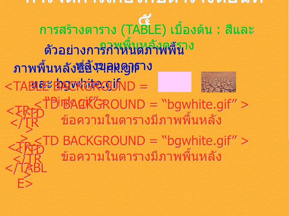 การจัดการเกี่ยวกับตารางตอนที่ ๕ การสร้างตาราง (TABLE) เบื้องต้น : สีและ ภาพพื้นหลังตาราง ภาพพื้นหลังชื่อ Pink.gif และ bgwhite.gif <TR> ตัวอย่างการกำหนดภาพพื้น หลังของตาราง <TR> ข้อความในตารางมีภาพพื้นหลัง ข้อความในตารางมีภาพพื้นหลัง