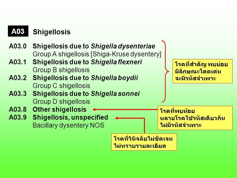A03 Shigellosis A03.0Shigellosis due to Shigella dysenteriae Group A shigellosis [Shiga-Kruse dysentery] A03.1Shigellosis due to Shigella flexneri Group B shigellosis A03.2Shigellosis due to Shigella boydii Group C shigellosis A03.3Shigellosis due to Shigella sonnei Group D shigellosis A03.8Other shigellosis A03.9Shigellosis, unspecified Bacillary dysentery NOS โรคที่สำคัญ พบบ่อย มีลักษณะโดดเด่น จะมีรหัสจำเพาะ โรคที่พบน้อย หลายโรคใช้รหัสเดียวกัน ไม่มีรหัสจำเพาะ โรคที่วินิจฉัยไม่ชัดเจน ไม่ทราบรายละเอียด