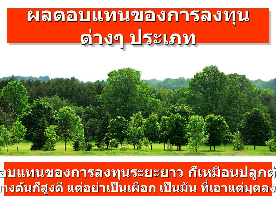 ผลตอบแทนของการลงทุน ต่างๆ ประเภท ผลตอบแทนของการลงทุนระยะยาว ก็เหมือนปลูกต้นไม้ บางต้นก็เตี้ย บางต้นก็สูงดี แต่อย่าเป็นเผือก เป็นมัน ที่เอาแต่มุดลงดินก