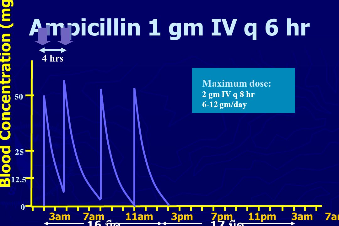 Ampicillin 1 gm IV q 6 hr Blood Concentration (mg/L) 4 hrs 50 25 12.5 0 Maximum dose: 2 gm IV q 8 hr 6-12 gm/day 3am 7am 11am 3pm 7pm 11pm 3am 7am 11a