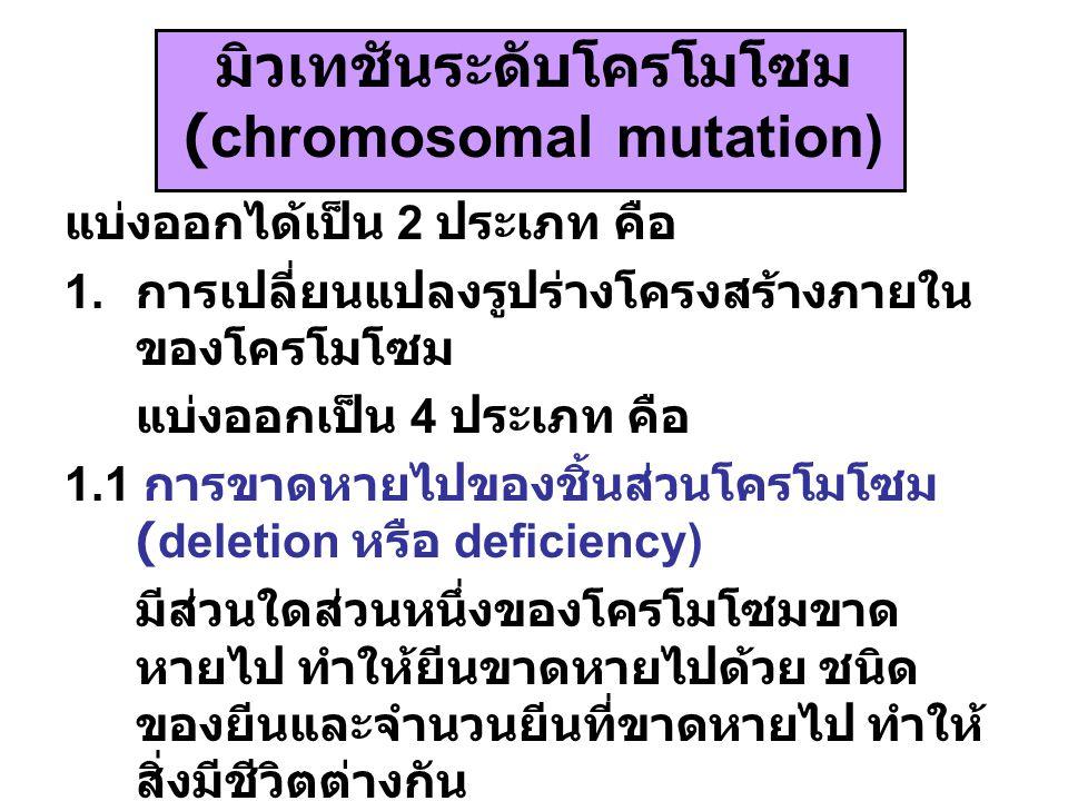มิวเทชันระดับโครโมโซม (chromosomal mutation) แบ่งออกได้เป็น 2 ประเภท คือ 1. การเปลี่ยนแปลงรูปร่างโครงสร้างภายใน ของโครโมโซม แบ่งออกเป็น 4 ประเภท คือ 1