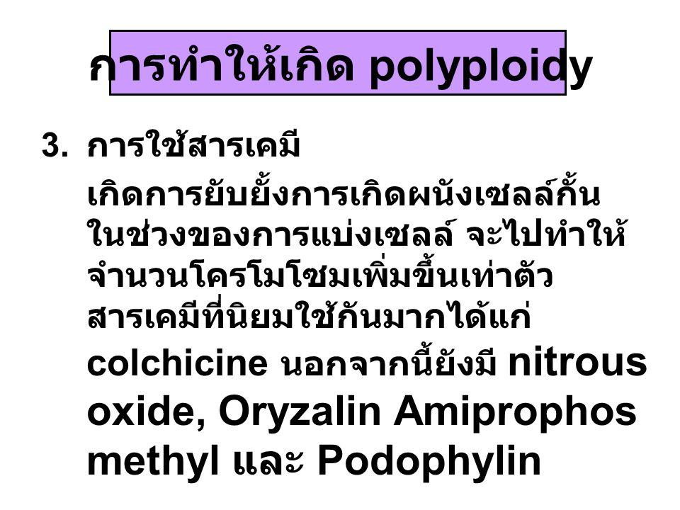 การทำให้เกิด polyploidy 3. การใช้สารเคมี เกิดการยับยั้งการเกิดผนังเซลล์กั้น ในช่วงของการแบ่งเซลล์ จะไปทำให้ จำนวนโครโมโซมเพิ่มขึ้นเท่าตัว สารเคมีที่นิ