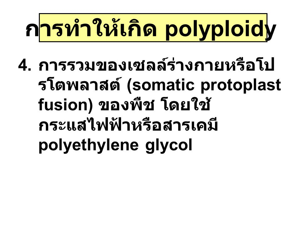 การทำให้เกิด polyploidy 4. การรวมของเซลล์ร่างกายหรือโป รโตพลาสต์ (somatic protoplast fusion) ของพืช โดยใช้ กระแสไฟฟ้าหรือสารเคมี polyethylene glycol