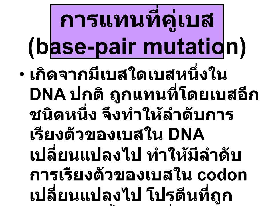 การแทนที่คู่เบส (base-pair mutation) เกิดจากมีเบสใดเบสหนึ่งใน DNA ปกติ ถูกแทนที่โดยเบสอีก ชนิดหนึ่ง จึงทำให้ลำดับการ เรียงตัวของเบสใน DNA เปลี่ยนแปลงไ