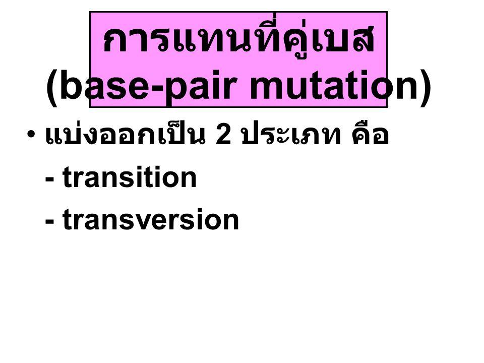 แบ่งออกเป็น 2 ประเภท คือ - transition - transversion การแทนที่คู่เบส (base-pair mutation)