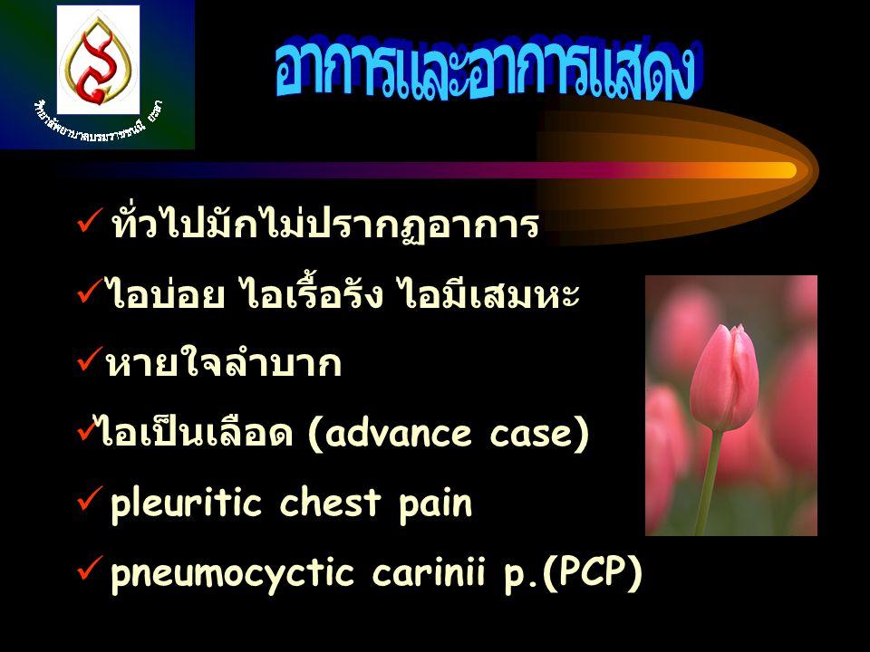ทั่วไปมักไม่ปรากฏอาการ ไอบ่อย ไอเรื้อรัง ไอมีเสมหะ หายใจลำบาก ไอเป็นเลือด (advance case) pleuritic chest pain pneumocyctic carinii p.(PCP)