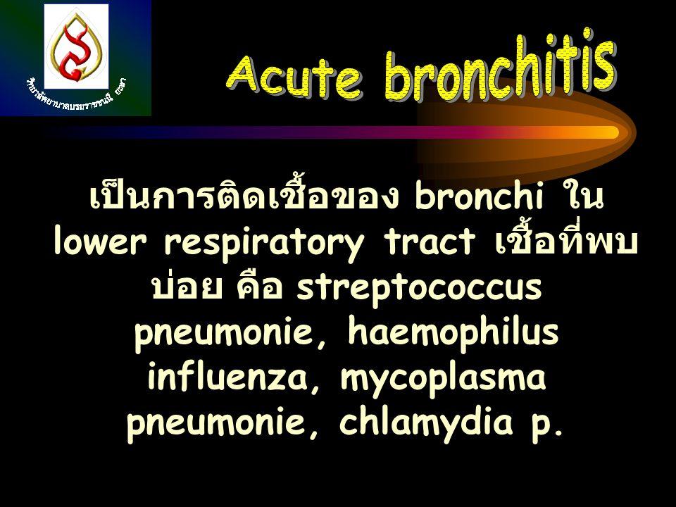 เป็นการติดเชื้อของ bronchi ใน lower respiratory tract เชื้อที่พบ บ่อย คือ streptococcus pneumonie, haemophilus influenza, mycoplasma pneumonie, chlamy