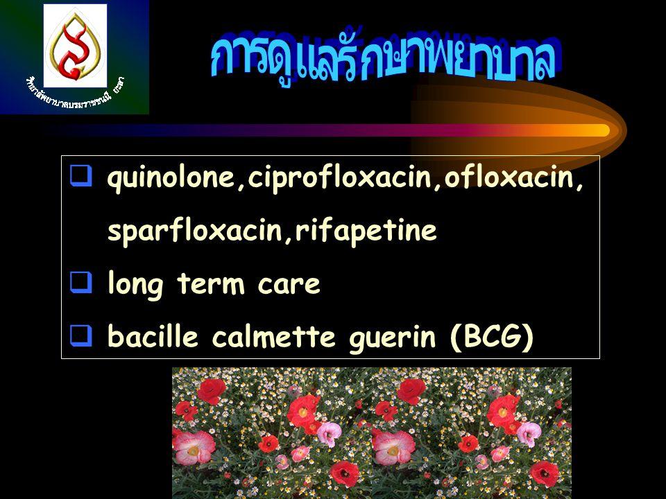  quinolone,ciprofloxacin,ofloxacin, sparfloxacin,rifapetine  long term care  bacille calmette guerin (BCG)