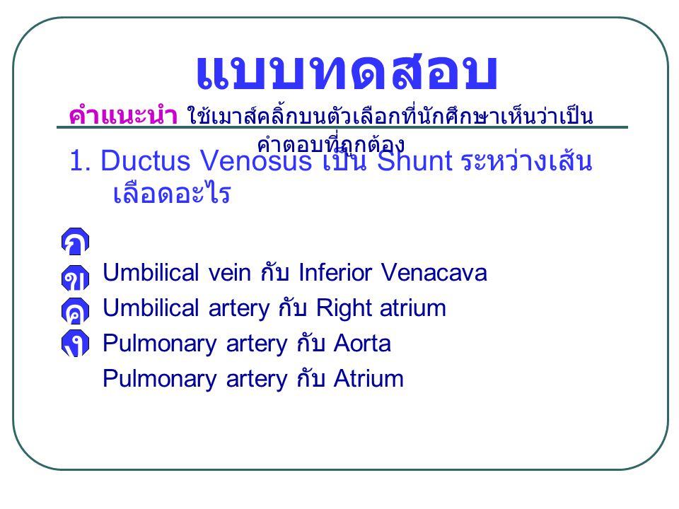 แบบทดสอบ 1. Ductus Venosus เป็น Shunt ระหว่างเส้น เลือดอะไร Umbilical vein กับ Inferior Venacava Umbilical artery กับ Right atrium Pulmonary artery กั