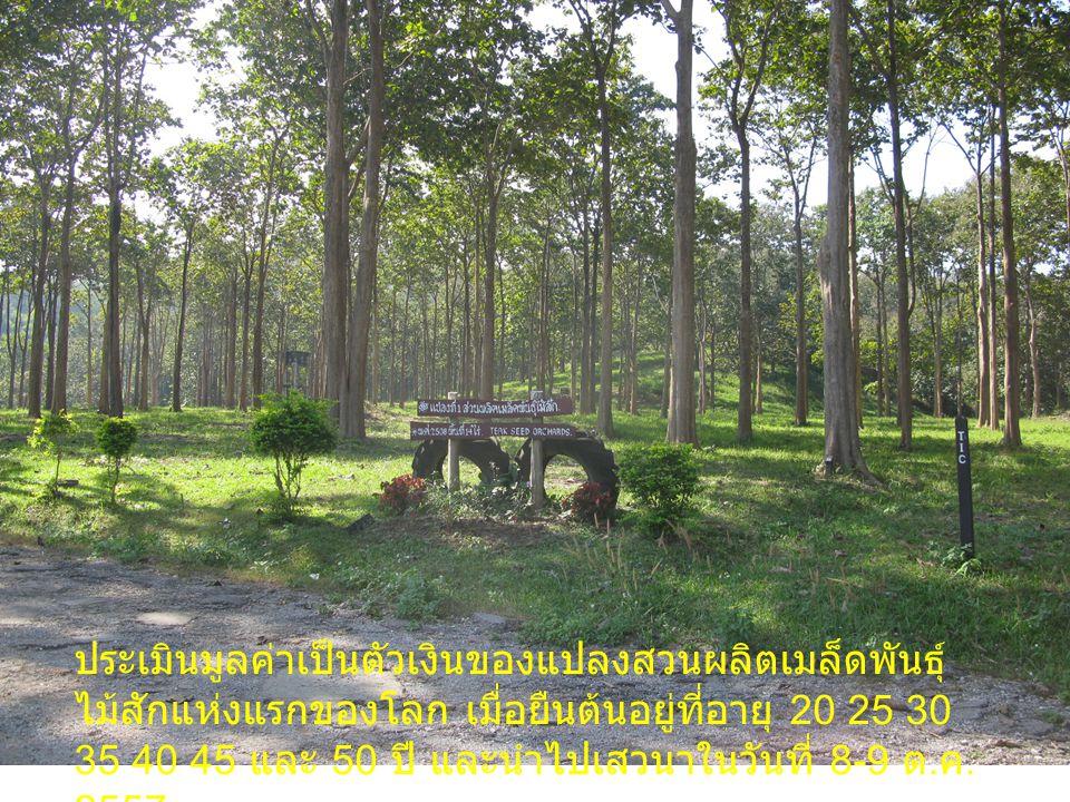 ข้อมูลแปลง สวนผลิตเมล็ดพันธุ์ไม้สักแปลงที่ 1 ปีที่ปลูก 2508 พื้นที่ 14 ไร่ จำนวนแม่ไม้ 16 แม่ไม้ ระยะปลูก 3x33x3 จำนวนต้นไม้ปัจจุบัน 272 ต้น