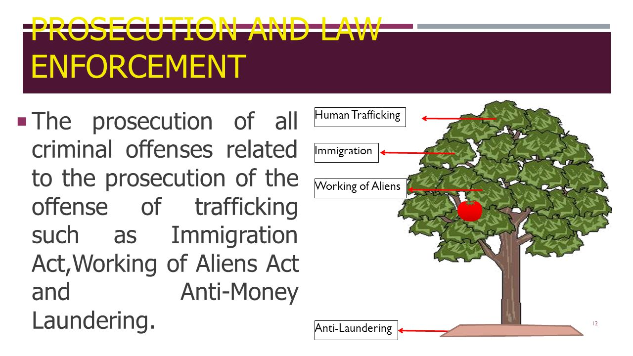 12  The prosecution of all criminal offenses related to the prosecution of the offense of trafficking such as Immigration Act,Working of Aliens Act and Anti-Money Laundering.