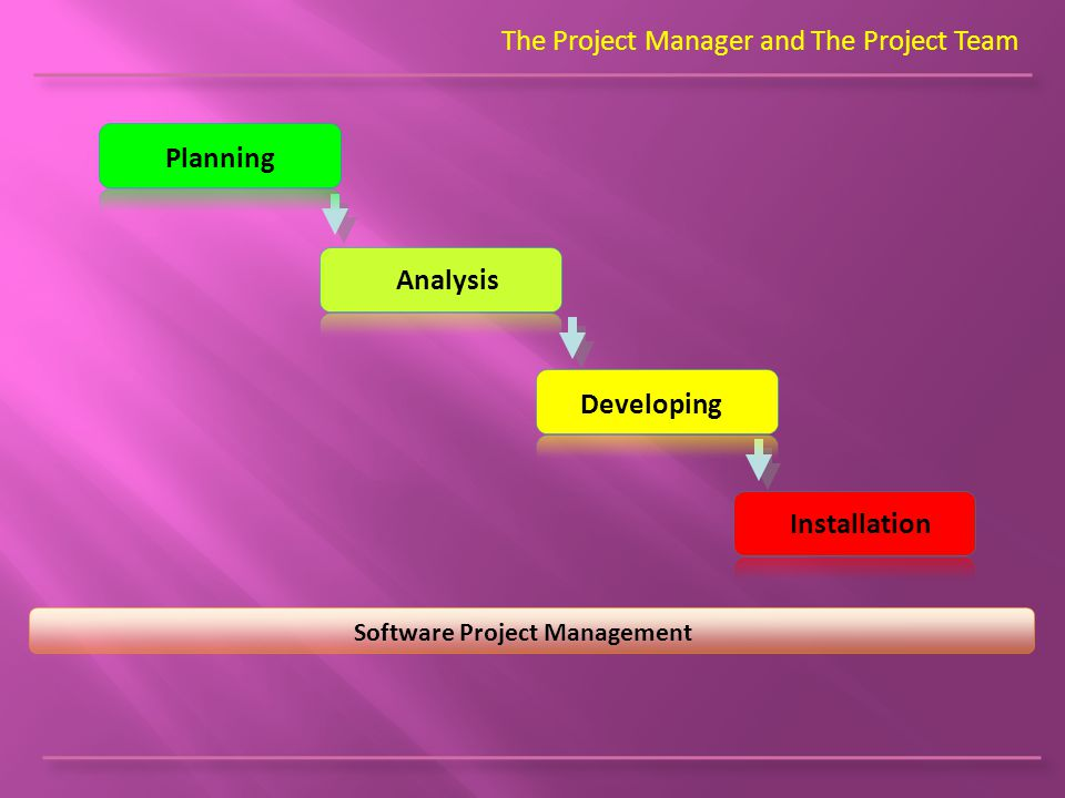 The Project Manager and The Project Team Software Project Management Planning Analysis Developing Installation