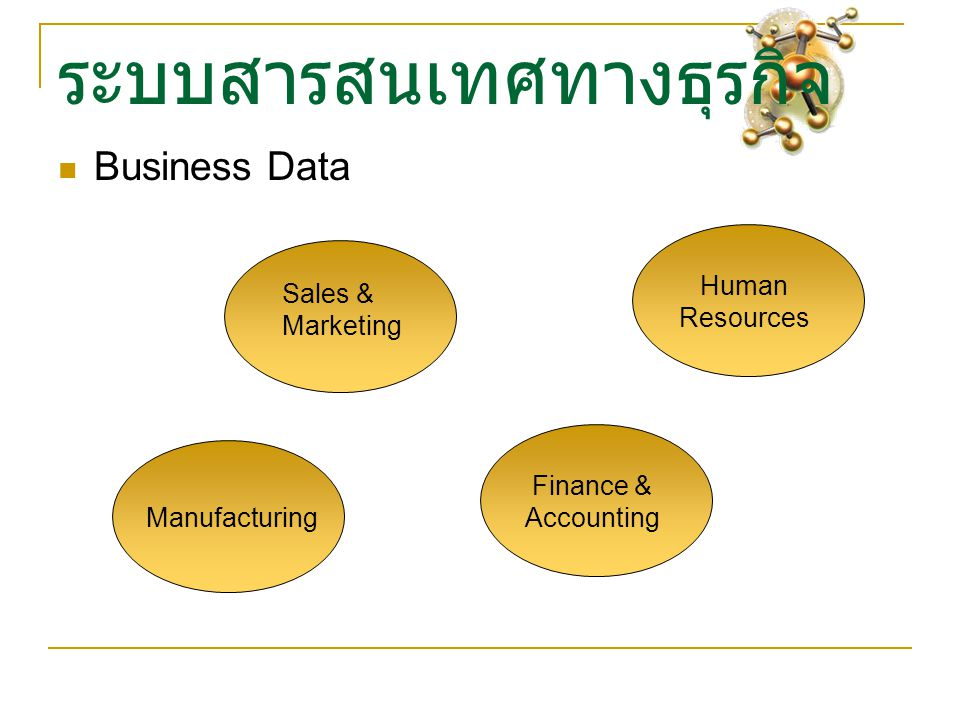 ระบบสารสนเทศทางธุรกิจ Business Data Sales & Marketing Finance & Accounting Human Resources Manufacturing