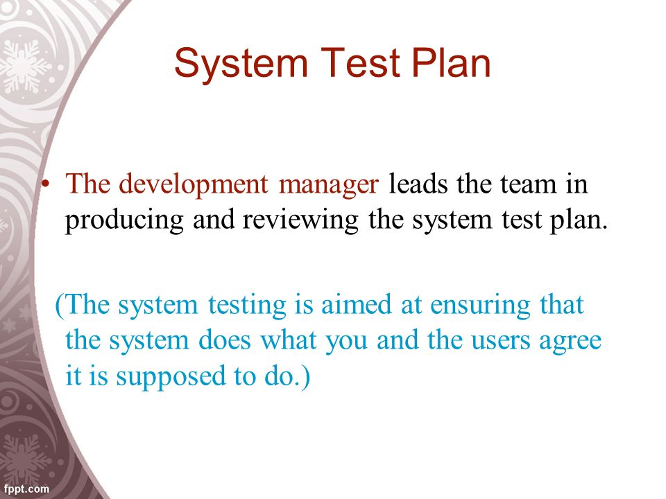 System Test Plan The development manager leads the team in producing and reviewing the system test plan.