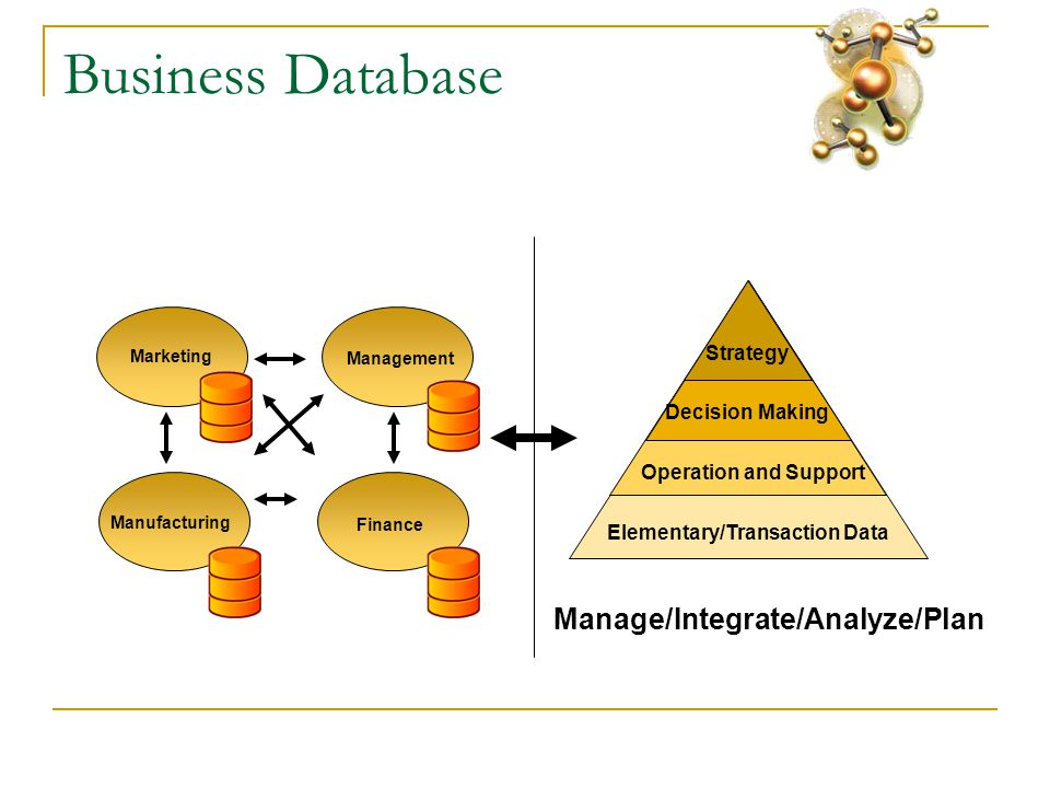 Business Database Elementary/Transaction Data Operation and Support Decision Making Strategy Marketing Finance Management Manufacturing Manage/Integrate/Analyze/Plan
