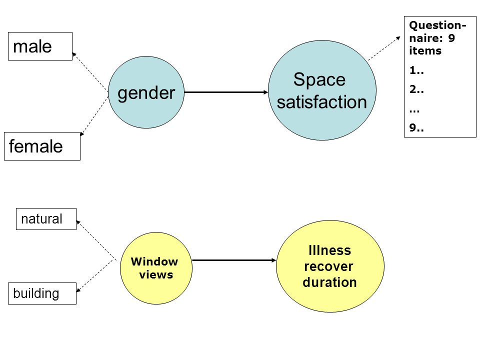 gender male female Space satisfaction Question- naire: 9 items 1..