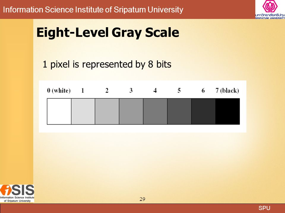 SPU Information Science Institute of Sripatum University 28 Example of a 100-pixel black and white image