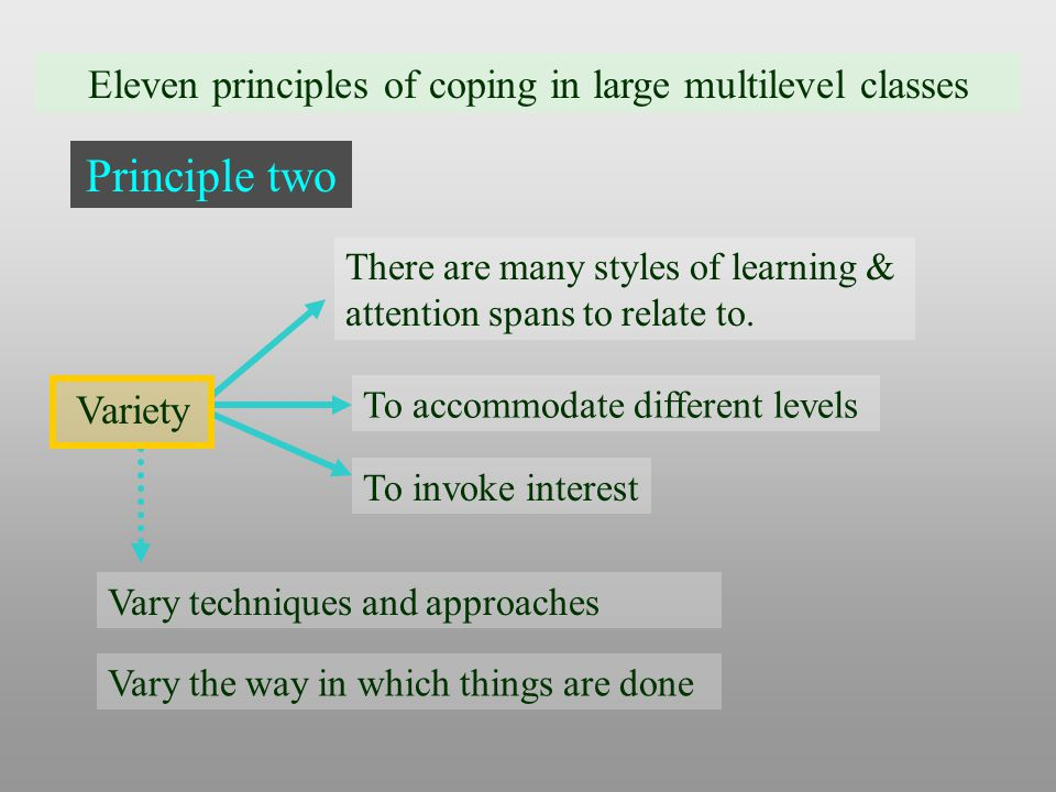 Eleven principles of coping in large multilevel classes Principle two There are many styles of learning & attention spans to relate to.