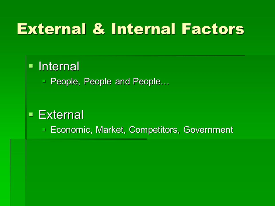 External & Internal Factors  Internal  People, People and People…  External  Economic, Market, Competitors, Government