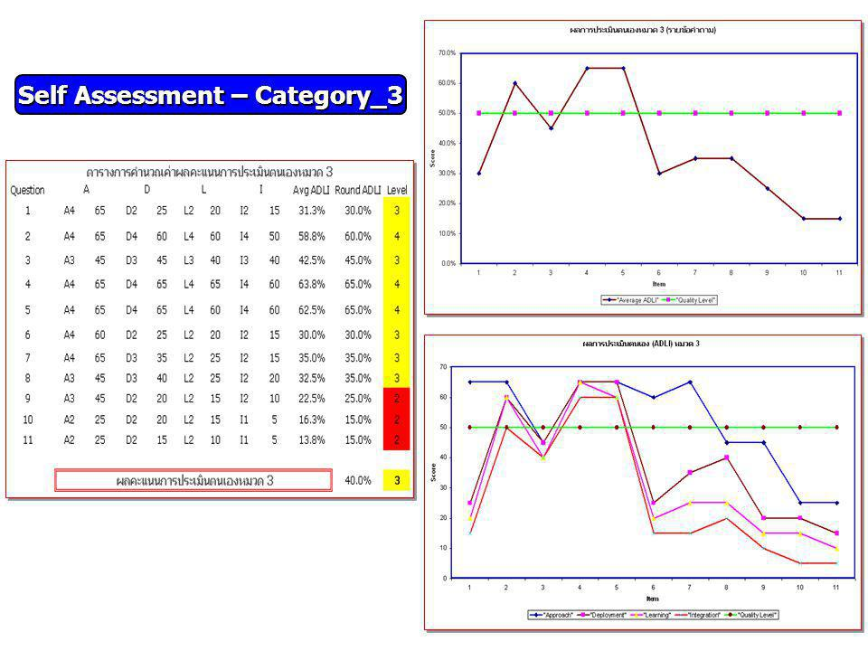Self Assessment – Category_3