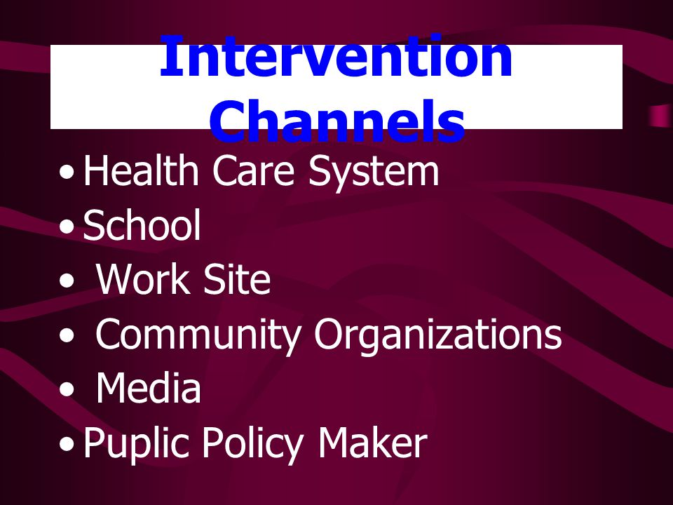 Intervention Channels Health Care System School Work Site Community Organizations Media Puplic Policy Maker