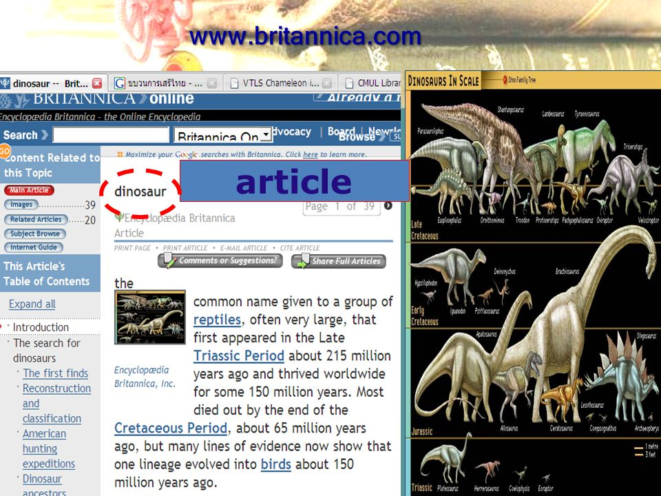 www.britannica.com article